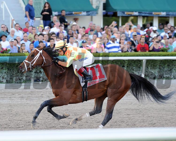 Dame Dorothy wins the 2015 Florida Sunshine Millions Distaff Stakes.<br /> Coglianese Photos/Lauren King