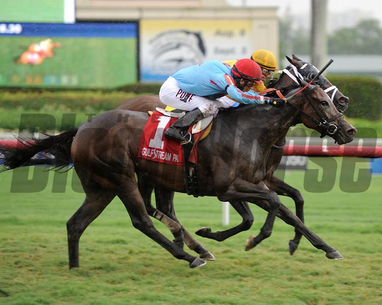 Josdesanimaux wins the 2015 Florida Sire Jewel Princess Stakes.<br /> Coglianese Photos/Leslie Martin