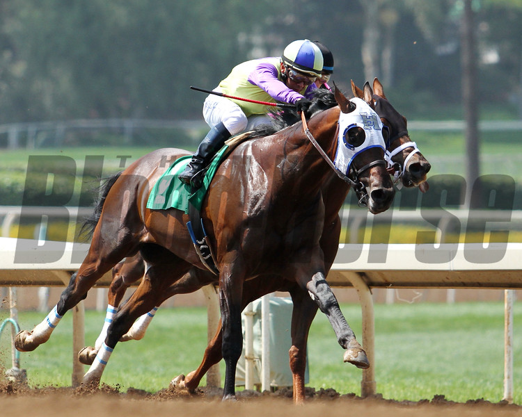 DESERT DYNAMO and Fernando Perez take the lead for trainer Jerry Hollendorfer and win an Allowance race for three-year-olds at Santa Anita 05.30.15. Photo by Helen Solomon