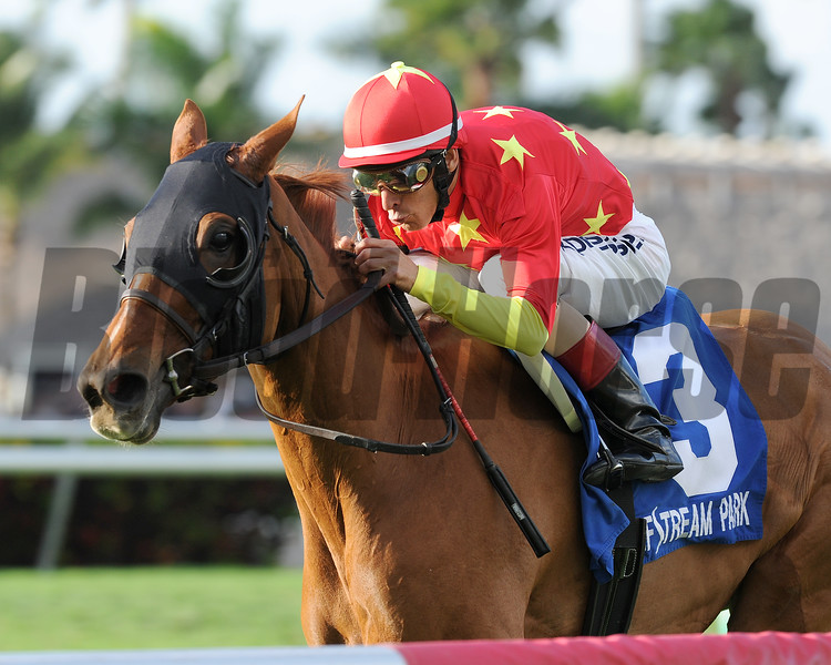 Parranda wins the 2015 Marshua's River Stakes at Gulfstream Park.<br /> Coglianese Photos/Kenny Martin