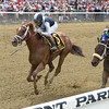 Curalina wins the 2015 Acorn Stakes.<br /> Coglianese Photos/Chelsea Durand