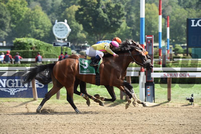 Royal Posse wins the 2015 Evan Shipman Stakes.<br /> Coglianese Photos