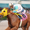 Flutterby is victorious in the Added Elegance Stakes at GUlfstream Park. <br /> Coglianese Photo