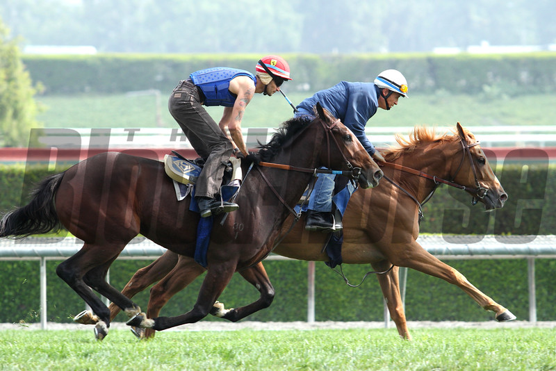 Pair of workers on the turf for trainer John Sadler at Santa Anita 05.30.15. Photo by Helen Solomon