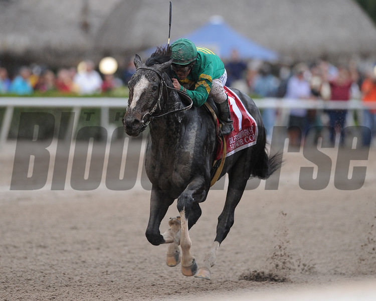 Honor Code wins the 2015 Gulfstream Park Handicap.<br /> Coglianese Photos/Kenny Martin