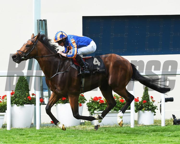 Gleneagles wins the St James's Palace Stakes at Royal Ascot.<br /> Mathea Kelley Photo