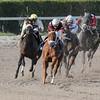 Sheer Drama wins the 2015 Royal Delta Stakes.<br /> <br /> Credit: Coglianese Photos/Brian Caputo