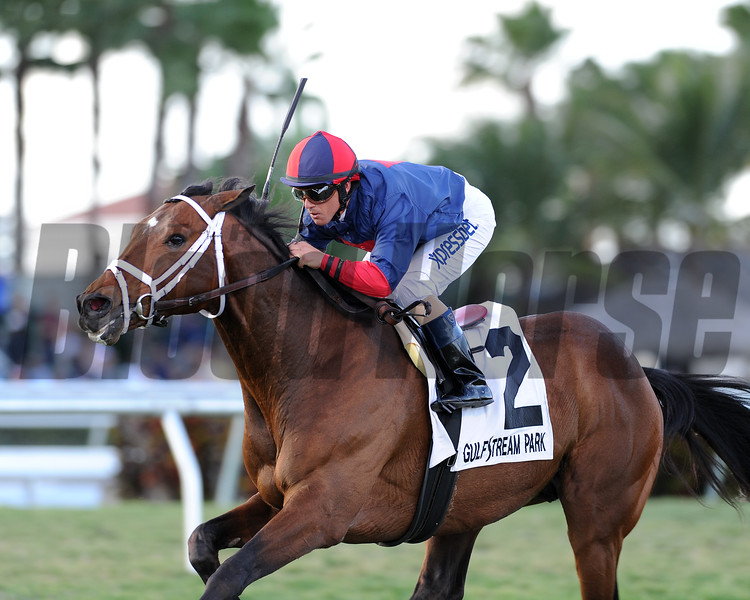Unitarian wins the 2015 H. Allen Jerkens Stakes at Gulfstream Park.<br /> Coglianese Photos/Kenny Martin
