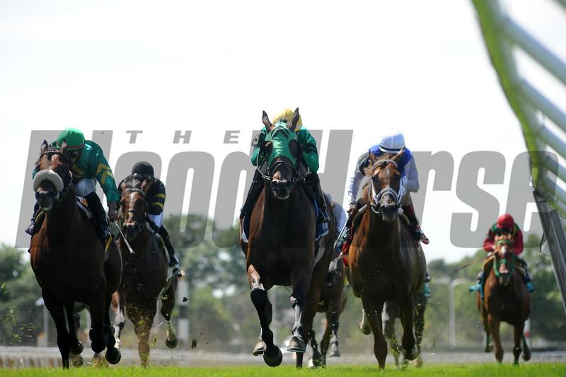 King Kreesa wins the 2015 Poker Stakes.<br /> Coglianese Photos