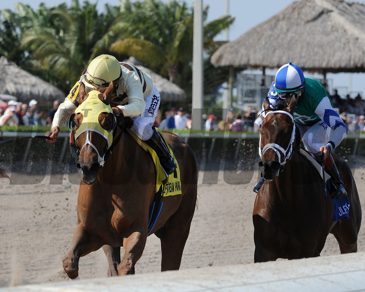 Classic Point wins the 2015 Inside Information.<br /> Coglianese Photos/Kenny Martin