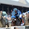Private Zone wins the 2015 Forego Stakes.<br /> Coglianese Photos/Adam Mooshian