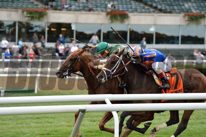 Tin Typ Gal wins the Miss Grillo Stakes at Belmont Park Sept. 27.<br /> Coglianese Photos/Joe Labozzetta