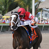 Ekati's Phaeton wins the 2015 Old Hat Stakes at Gulfstream Park.<br /> Coglianese Photos/Kenny Martin