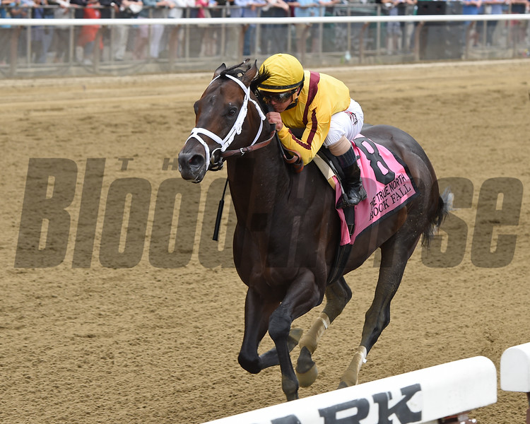 Rock Fall wins the 2015 True North.<br /> Coglianese Photos/Chelsea Durand