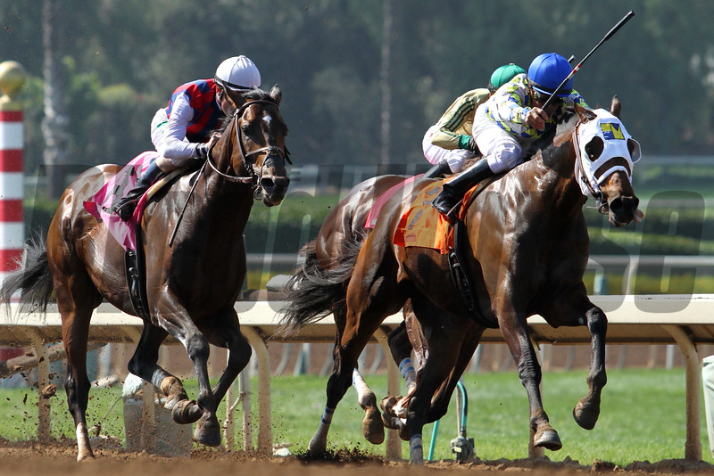 CATCH A FLIGHT and Gary Stevens win the G2 Californian Stakes, with MORENO and Cornelio Velasquez second, at Santa Anita 05.30.15. Photo by Helen Solomon