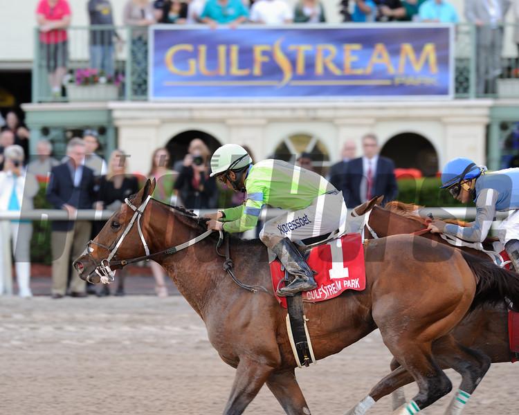 Sr. Quisqueyano wins the 2015 Florida Sunshine Millions Classic Stakes.<br /> Coglianese Photos/Lauren King