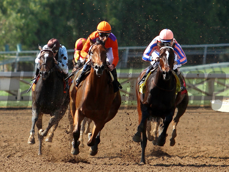 BEHOLDER wins the Santa Lucia Stakes in her 2015 debut at Santa Anita 04.10.15. Photo by: Helen Solomon