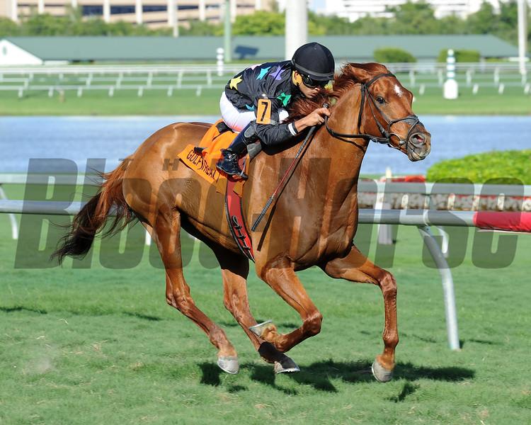 Manchurian High wins the 2015 Florida Sunshine Millions Turf Stakes at Gulfstream Park.<br /> Coglianese Photos/Lauren King