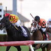 Reporting Star wins the 2015 El Prado Stakes.<br /> Coglianese Photos/Kenny Martin