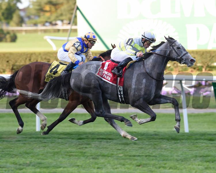 Stellar Path wins the 2015 Athenia Stakes.<br /> Coglianese Photos