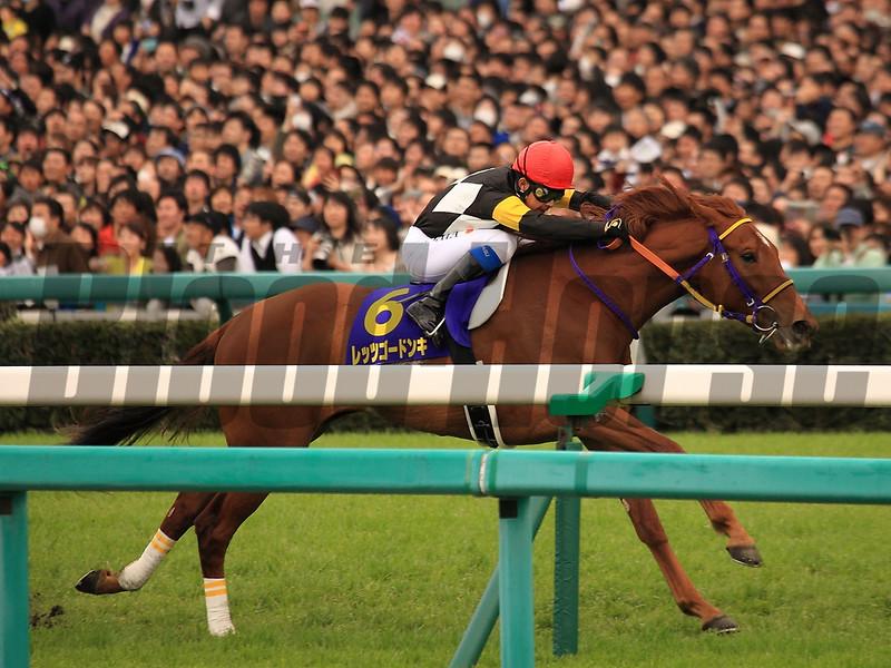Let's Go Donki wins the 2015 Oka Sho (Jpn-I Japanese Two Thousand Guineas).<br /> Naoji Inada Photo