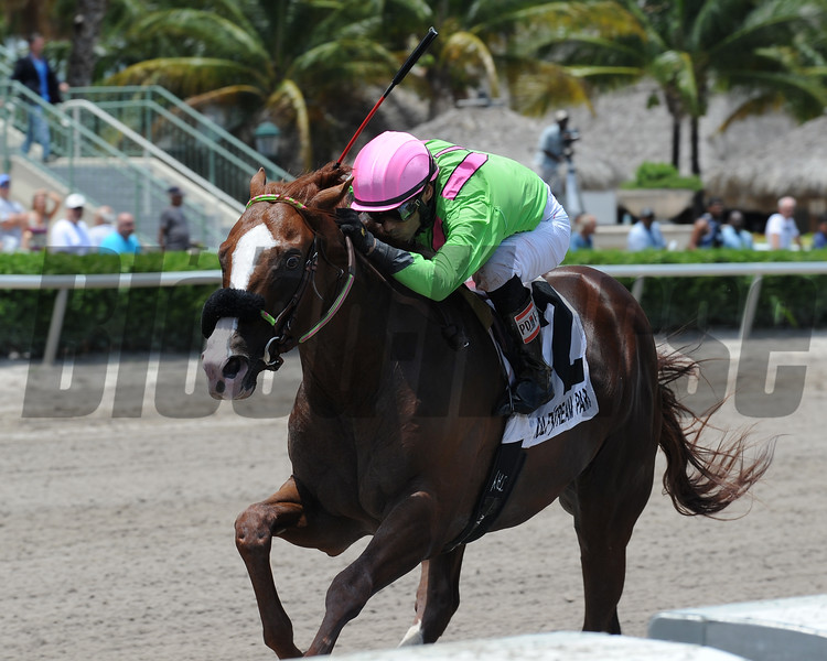 Catalina Red wins the 2015 Jackson Bend Stakes.<br /> Coglianese Photos/Natalie Fawkes