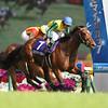 Clarity Sky wins Japan's NHK Mile Cup May 10, 2015.<br /> Masakazu Takahashi Photo