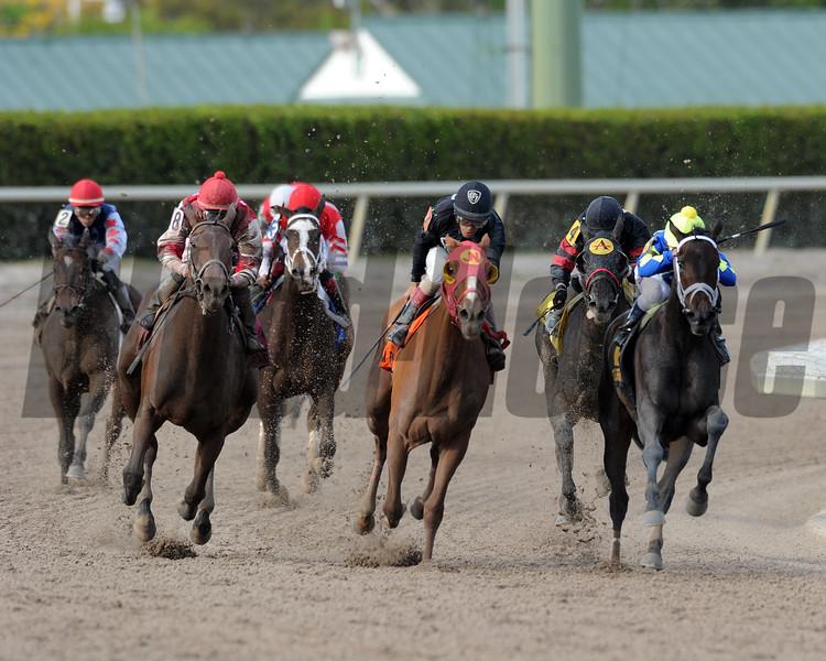 Birdatthewire wins the 2015 Gulfstream Park Oaks.<br /> Coglianese Photos/Brian Caputo