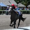 Francesco Blue wins the Birdonthewire Stakes.<br /> Coglianese Photos/Kenny Martin