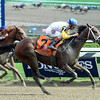 Unbridled Forever wins the 2015 Ballerina.<br /> Coglianese Photos/Lauren King