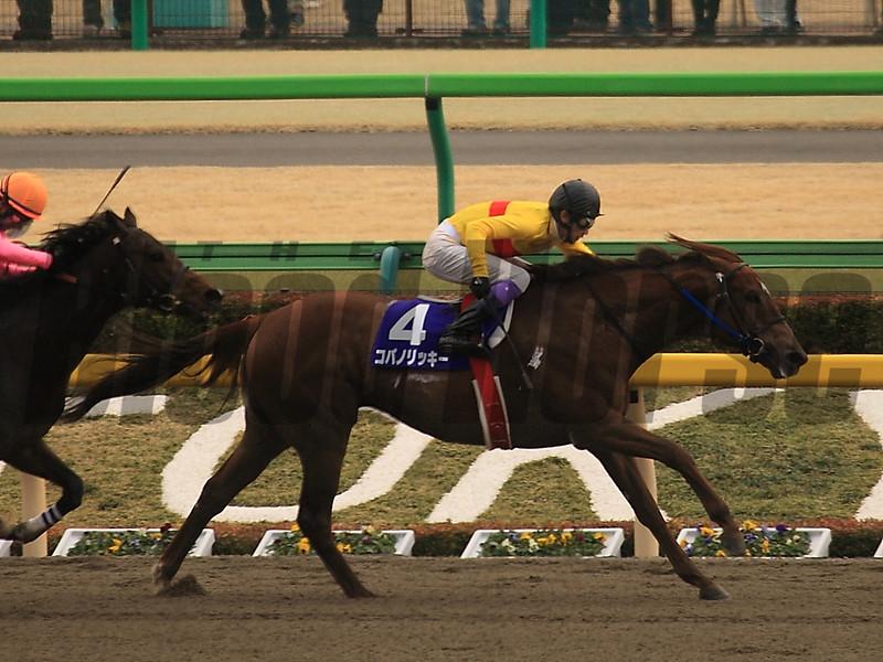 Copano Rickey wins the February Stakes Feb. 22, 2015.<br /> Naoji Inada Photo