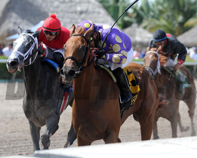 Dogwood Trail wins the Azalea Stakes.<br /> Coglianese Photos/Kenny Martin