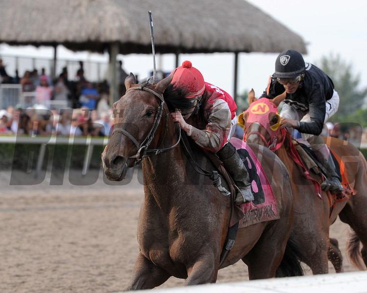 Birdatthewire wins the 2015 Gulfstream Park Oaks.<br /> Coglianese Photos/Kenny Martin