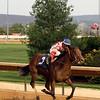 Control Stake Cornelio Velasquez Robert Hilton Memorial Chad B. Harmon