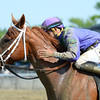 Quezon wins the 2015 Bouwerie Stakes.<br /> Coglianese Photos/Joe Labozzetta