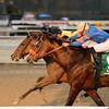 Empire Dreams wins the 2015 Alex M. Robb Stakes.<br /> Coglianese Photos/Joe Labozzetta