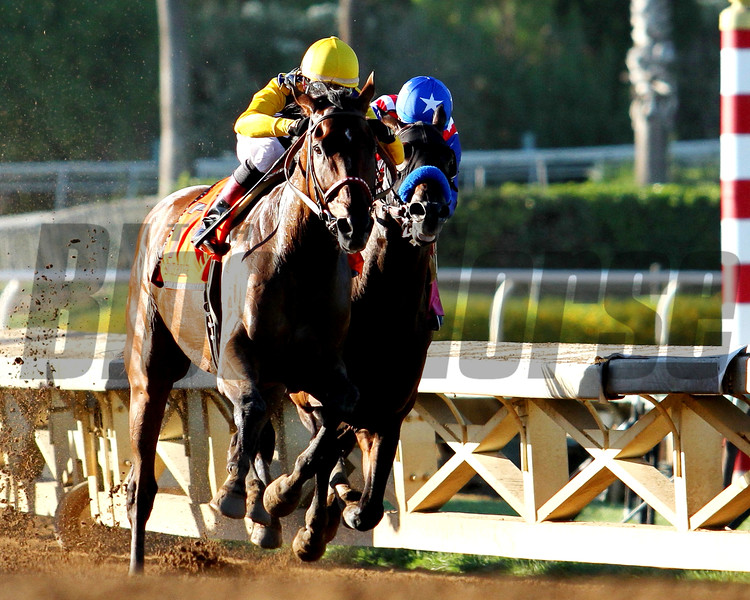 SMOOTH ROLLER, ridden by Tyler Baze and trained by Victor Garcia, takes over the lead from BAYERN and Martin Garcia at the top of the stretch to win the G1 AWESOME AGAIN STAKES at Santa Anita 09.26.15. Photo: Helen Solomon