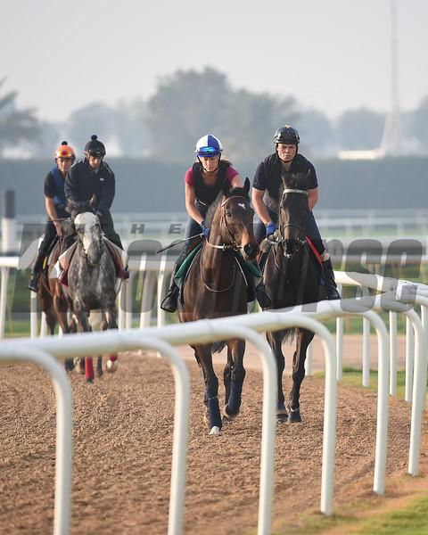Scenes at Meydan March 25 for the Dubai World Cup Carnival.<br /> Mathea Kelley/Dubai Racing Club, Meydan, Dubai UAE