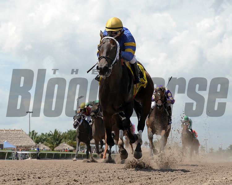 It's High Time wins the 2015 Florida Sire Desert Vixen Stakes.<br /> <br /> Credit: Coglianese Photos/Leslie Martin