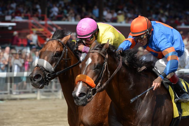 Royal Posse wins the 2015 Evan Shipman Stakes.<br /> Coglianese Photos/Adam Mooshian