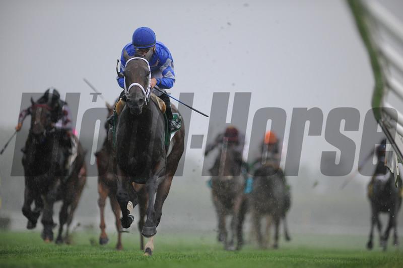 Sentiero Italia wins the 2015 Sands Point Stakes.<br /> Coglianese Photos