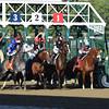 Texas Red wins the 2015 Jim Dandy.<br /> Coglianese Photos
