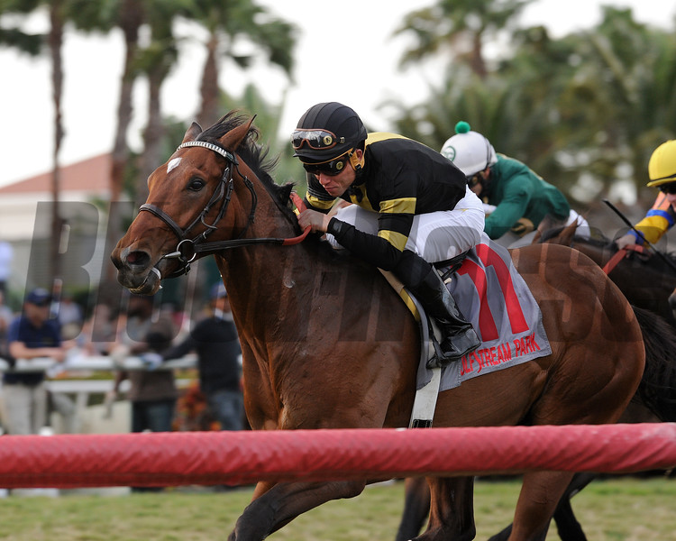 Long On Value wins the 2015 Canadian Turf Stakes.<br /> Coglianese Photos/Kenny Martin