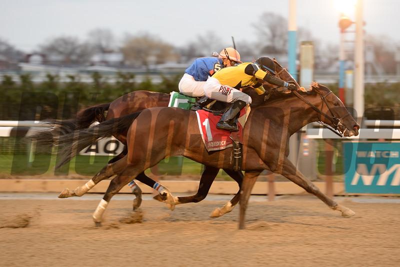 Empire Dreams wins the 2015 Alex M. Robb Stakes.<br /> Coglianese Photos