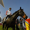 Sole Power wins the Al Quoz Sprint at the Dubai World Cup Carnival March 28, 2015<br /> Msakazu Takahashi Photo