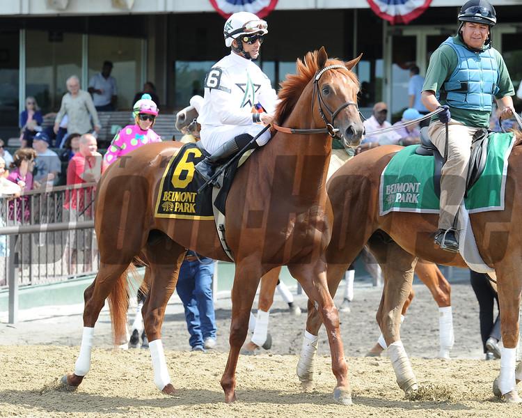 Speightster wins the 2015 Dwyer Stakes.<br /> Coglianese Photos/Adam Mooshian