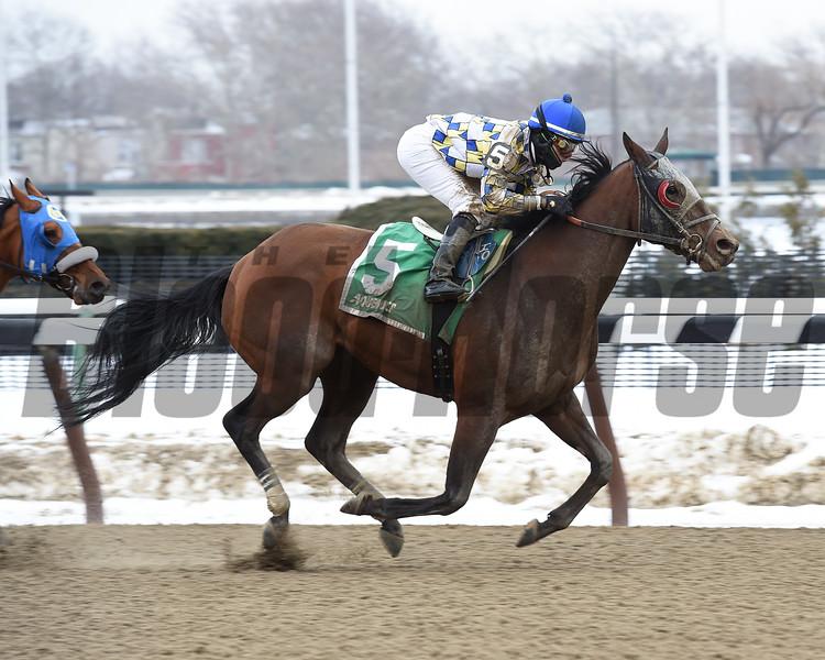 Salutos Amigos wins the 2015 Toboggan Stakes at Aqueduct.<br /> Coglianese Photos/Susie Raisher