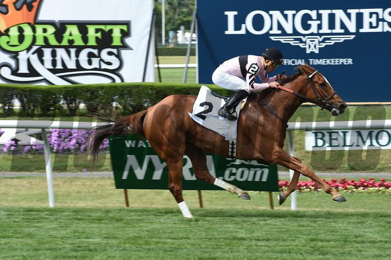 My Miss Sophia winning Race 6 (an allowance) at Belmont Park on June 5, 2015. <br /> Photo by: Adam Coglianese/NYRA