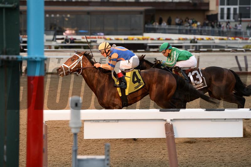 Sudden Suprise wins the New York Stallion Series Dec. 27, 2015.<br /> Coglianese Photo