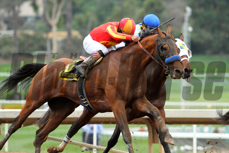 HOPPERTUNITY and Martin Garcia, in the silks of Mike Pegram, run second in the G1 Gold Cup at Santa Anita 06.27.15. Photo by Helen Solomon